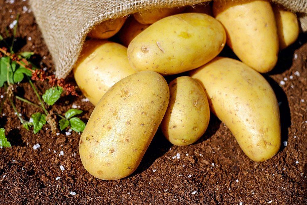 Land- en tuinbouw opgelet! Aanvullende noodmaatregelen